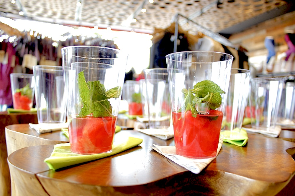 Watermelon Minto Mojitos copy