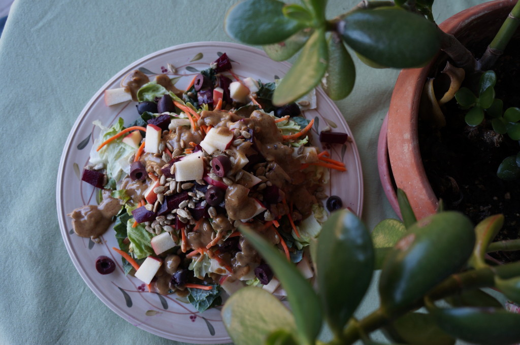 Autumn Harvest Salad by Robin Shirley