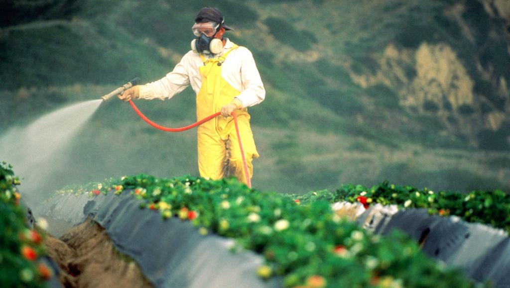 sprayingcrops-1100